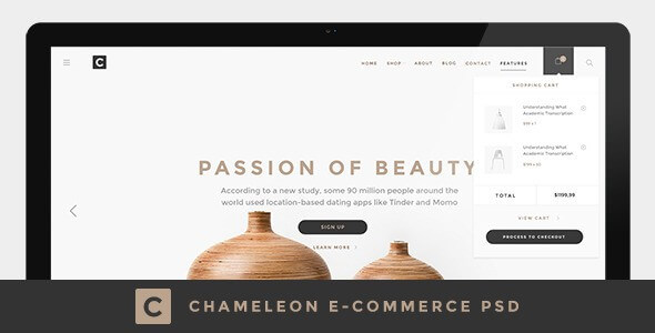 15 Best eCommerce PSD Templates to Build Online Store 2019