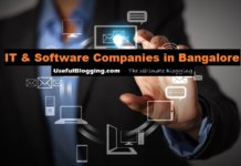 IT & Software Companies in Bangalore