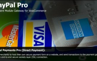 8 Best WooCommerce Payment Plugins for WordPress 2017