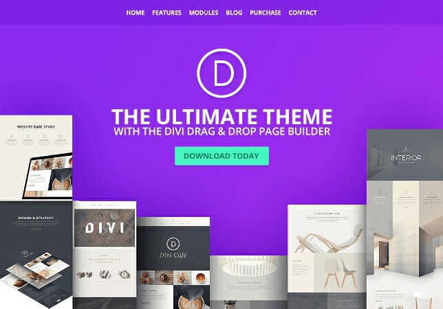 The 7 Best WordPress Themes and Page Builder Plugins 2019