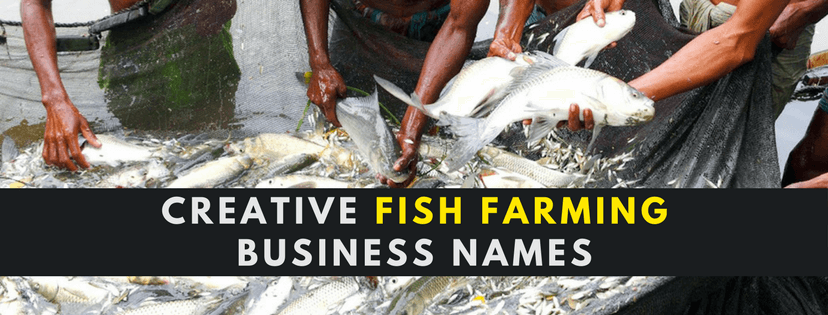 how to start a fish farming business